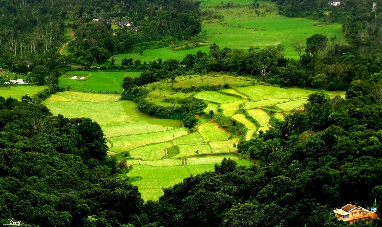 Top romantic destinations in India